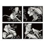 Black & White Tropical, Set of 4 by Allison Cosmos in Black Framed Paper, Medium Art Print