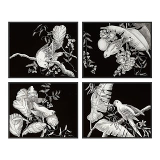 Black & White Tropical, Set of 4 by Allison Cosmos in Black Framed Paper, Medium Art Print For Sale