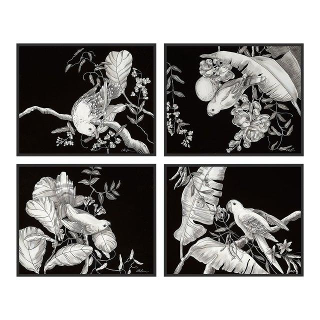 Black & White Tropical, Set of 4 by Allison Cosmos in Black Framed Paper, Medium Art Print For Sale