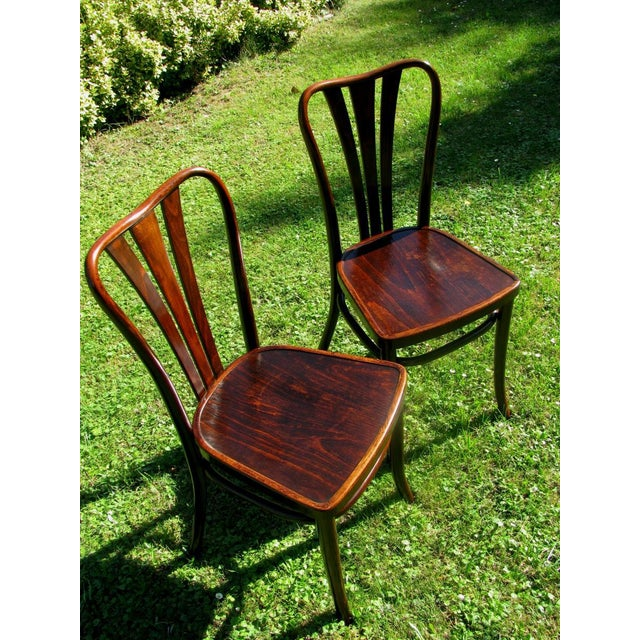 Art Deco Vintage Dining Chairs by Thonet, 1930s - Set of 6 For Sale - Image 3 of 11