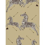 Sample, Scalamandre Zebras, Gold Wallpaper
