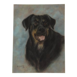 Vintage Pastel of a Black Dog Painting by Mary Blaney White For Sale