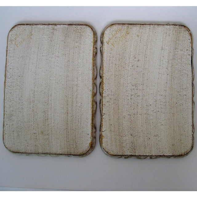 Florentine Botanical Trays - a Pair For Sale - Image 5 of 6