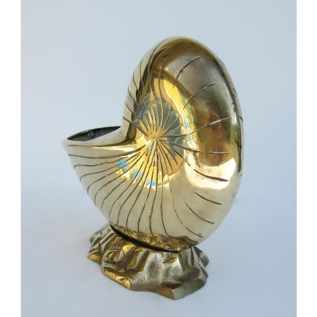 Vintage Mid-Century Modern Brass Nautilus Shell Planter For Sale In West Palm - Image 6 of 13