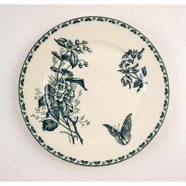 French Blue & White Transferware Plate Butterfly For Sale - Image 4 of 4
