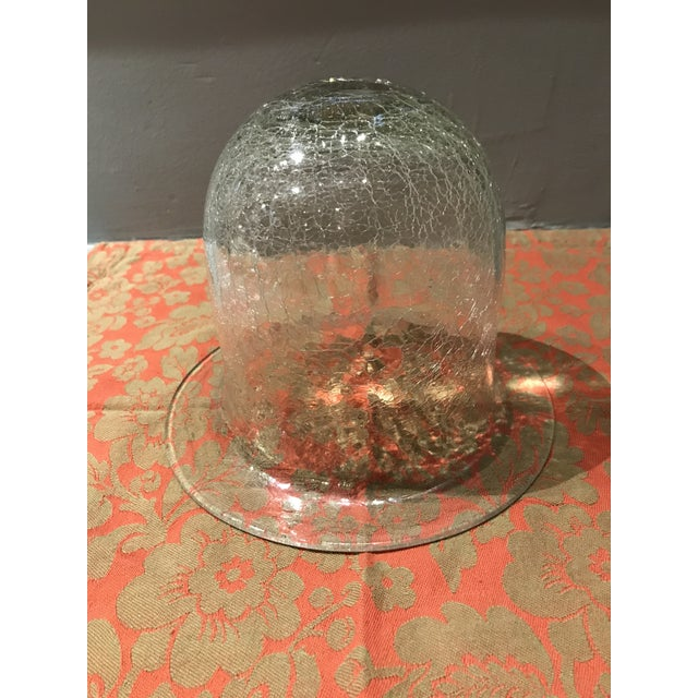 Glass 20th Century Traditional Crackled Glass Bell Display Cloche For Sale - Image 7 of 7