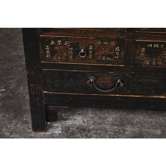Black 19th Century Chinese Apothecary Cabinet With Drawers For Sale - Image 8 of 9