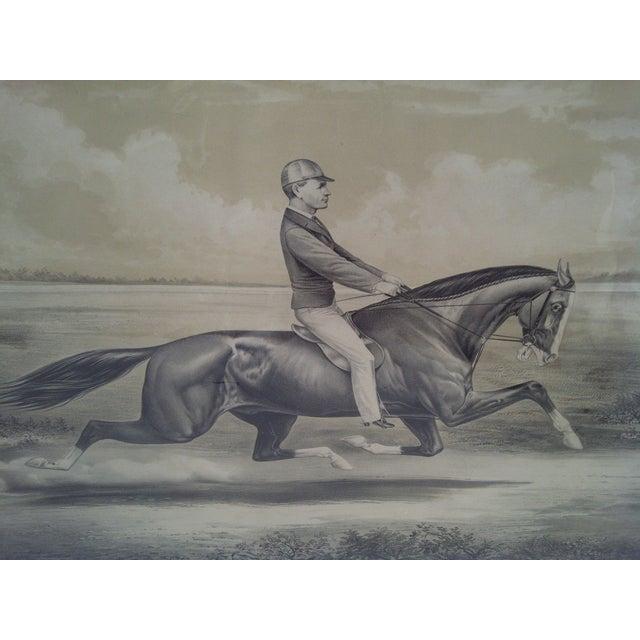 """""""King of the Turf"""", Original Lithograph For Sale - Image 4 of 9"""