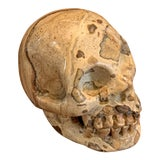 Image of Stone Skull For Sale
