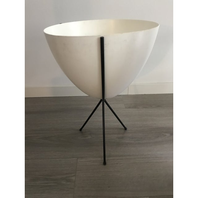 Design Within Reach Dwr Contemporary Bullet Planter For Sale - Image 4 of 5