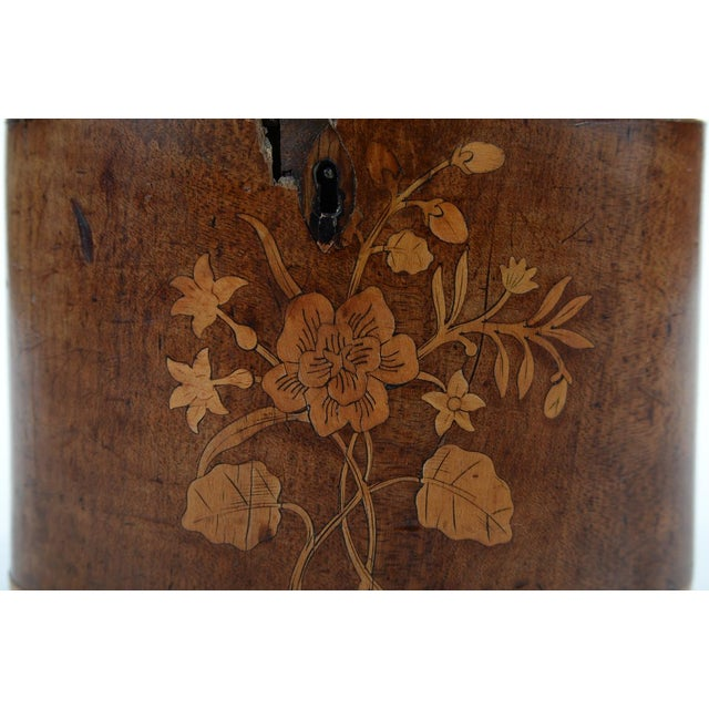 19th Century Oval Shaped Wood Box with Sea Shells - Image 4 of 9