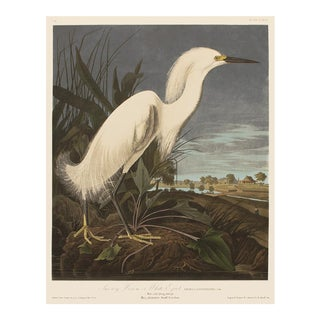 1990s Snowy Heron or White Egret by Audubon, Large Chinoiserie or Cottage Style Print For Sale