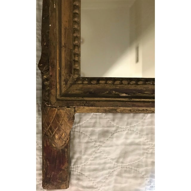 Petite Louis XVI Giltwood Mirror For Sale In New Orleans - Image 6 of 8