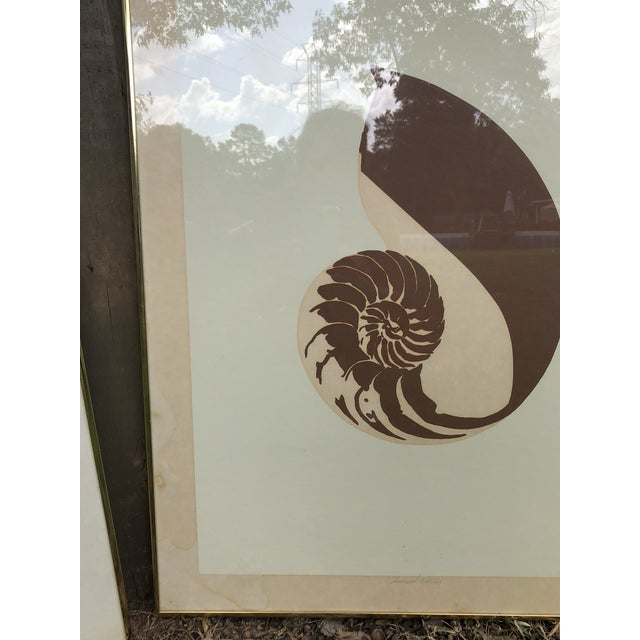 Vintage Van Guard Studio Nautilus Shell Lithographs - a Pair For Sale In Greenville, SC - Image 6 of 9