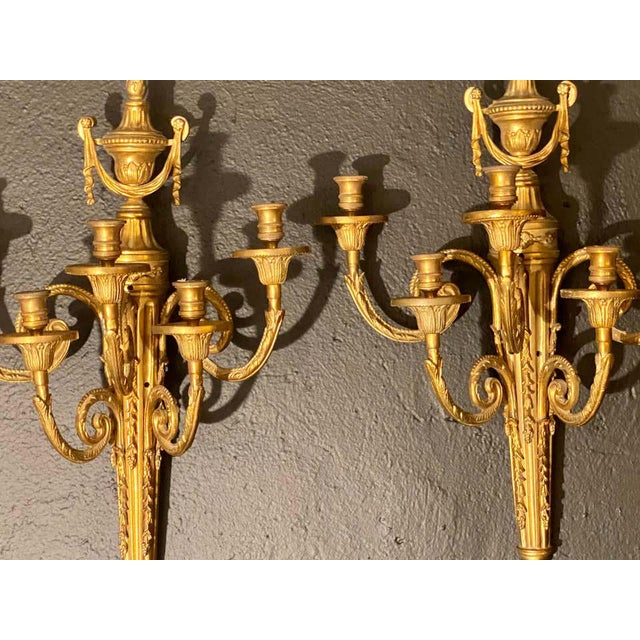Pair of Adams style five arm tassel decorated dore bronze wall candelabras. Two pairs are available.