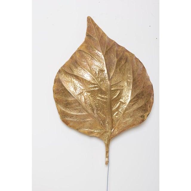 Hollywood Regency 1 of 4 Huge Rhaburb Leaf Brass Wall Lights or Sconces by Tommaso Barbi For Sale - Image 3 of 13