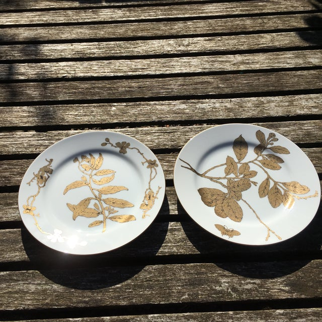 Vintage Gold and White Porcelain Plates - Pair - Image 7 of 7
