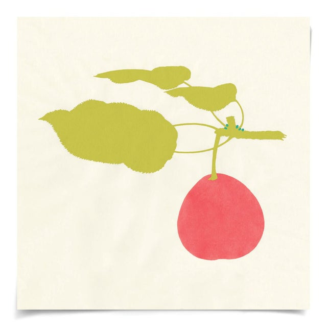 Contemporary Bright Pomona Fruit 1, Unframed Artwork For Sale - Image 3 of 3