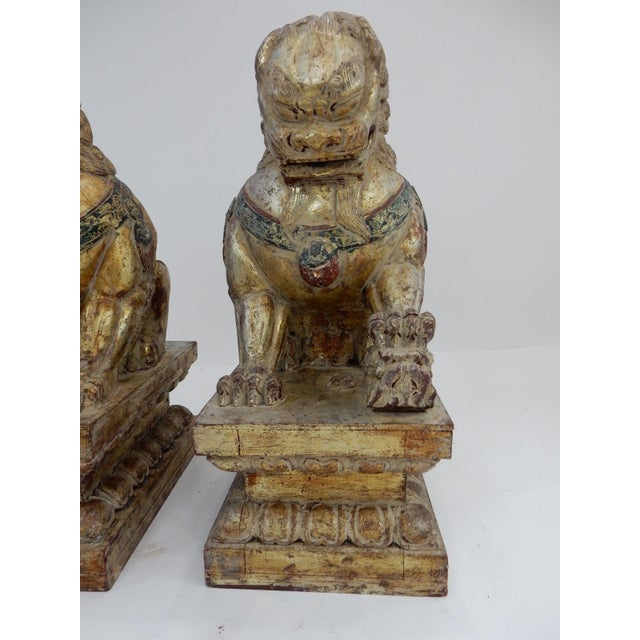 Asian Antique Qing Dynasty Temple Foo Dogs - A Pair For Sale - Image 3 of 11