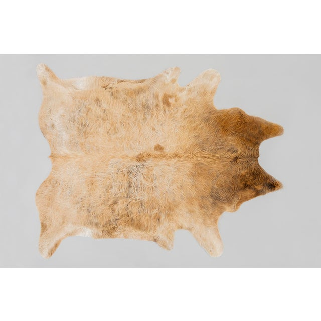 Contemporary Genuine Brazilian Cowhide, Blonde For Sale - Image 3 of 3