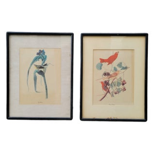 Mid 20th Century Bird and Botanical Prints, Framed - a Pair For Sale