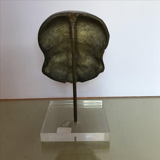 Mid-Century Bronze Buddha Head For Sale - Image 4 of 6
