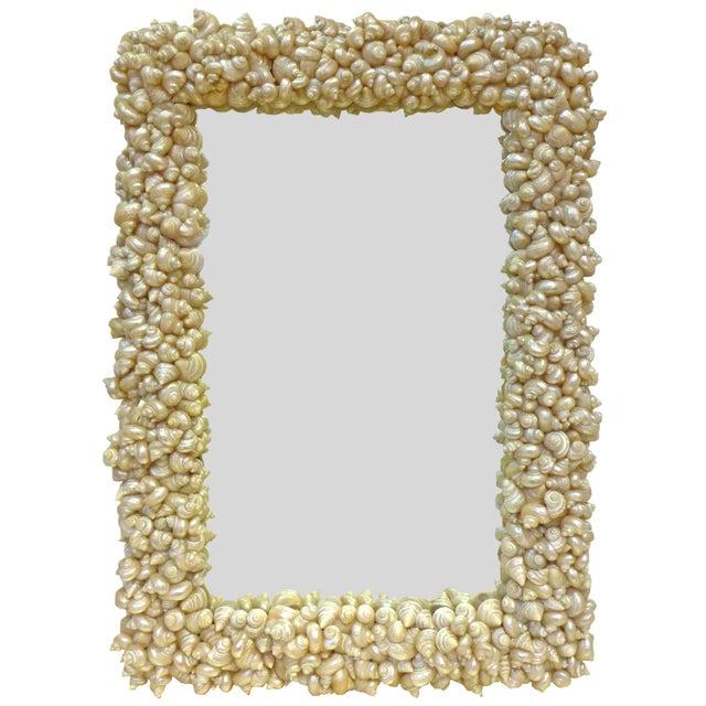 Seashells-Framed Half-Length Mirror For Sale - Image 4 of 4