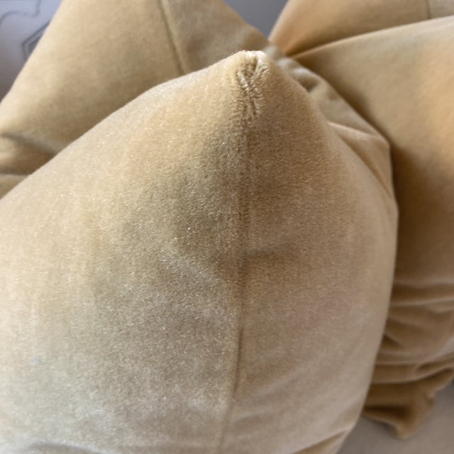 """Transitional Mohair Velvet in Wheat 22"""" Pillows-A Pair For Sale - Image 3 of 4"""