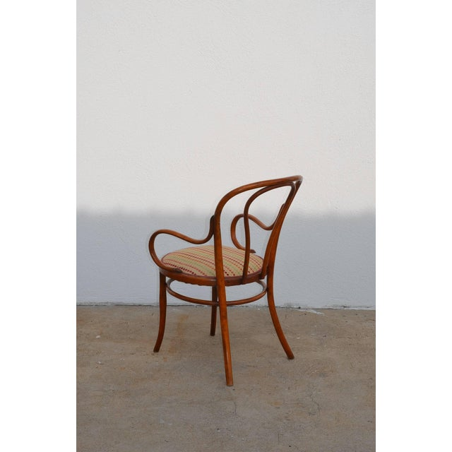 1900 - 1909 Set of Four Large Slender Bentwood Dining Set by Thonet For Sale - Image 5 of 9