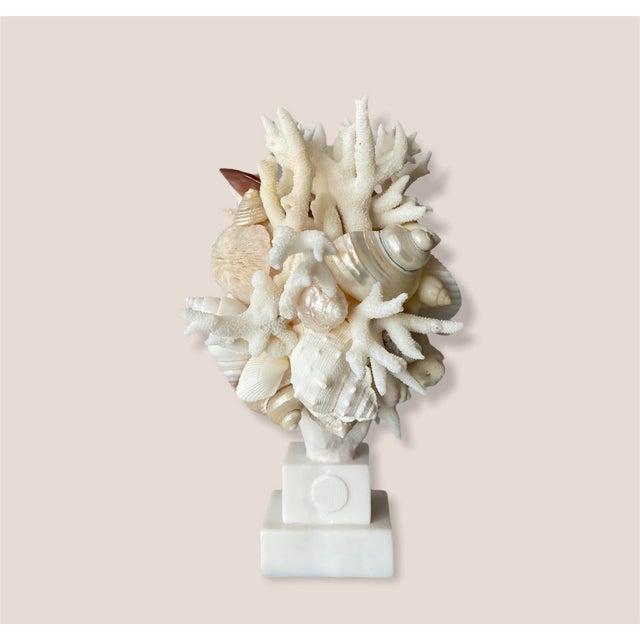 Christa's South Seashells Contemporary Mini Shell-Encrusted Hygiea Head For Sale - Image 4 of 5