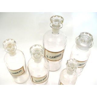 Antique Apothecary Jars - Set of 5 Preview