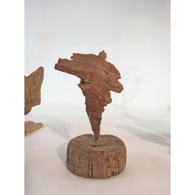Mid-Century Modern Collection of Abstract Driftwood Sculptures, Gloucester, Ma, Circa 1960s-1970s - Set of 9 For Sale - Image 3 of 13