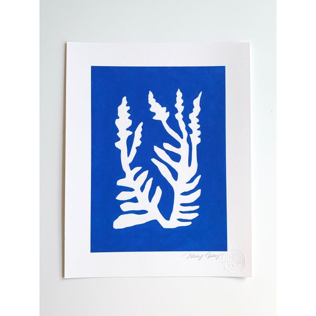 Paper Sunprints Giclees Signed and Embossed by Neicy Frey - Set of 8 For Sale - Image 7 of 11