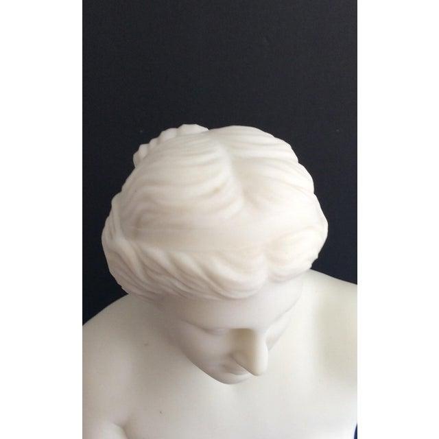 Cream 19th Century Venus De Milo Marble Bust For Sale - Image 8 of 12