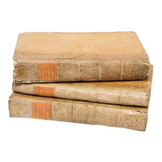 17th Century Vellum Books - Set of 3