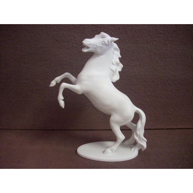 1960s Kaiser Porcelain Horse Figurine For Sale - Image 5 of 5