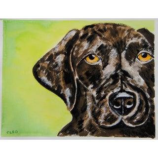 Chocolate Labrador Portrait by Cleo Plowden For Sale