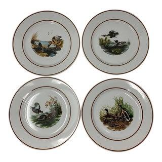 1960s Vintage Jkw Bavaria Western Germany Plates of John James Audubon Prints - Set of 4 For Sale