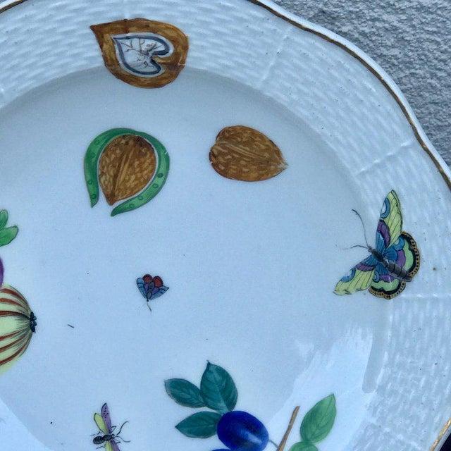 Three Antique European Naturalistic Porcelain Plates For Sale - Image 11 of 13