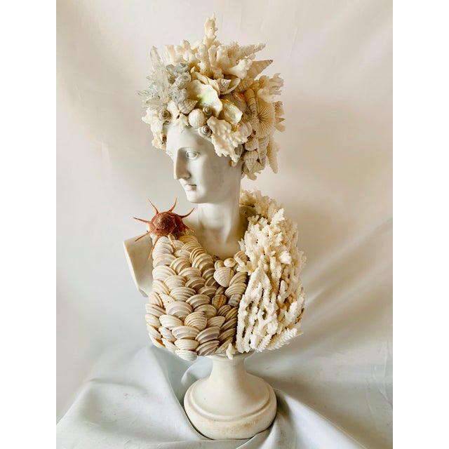 "2020s Mediterranean Seashell-Encrusted Diana Bust - 14"" For Sale - Image 5 of 5"