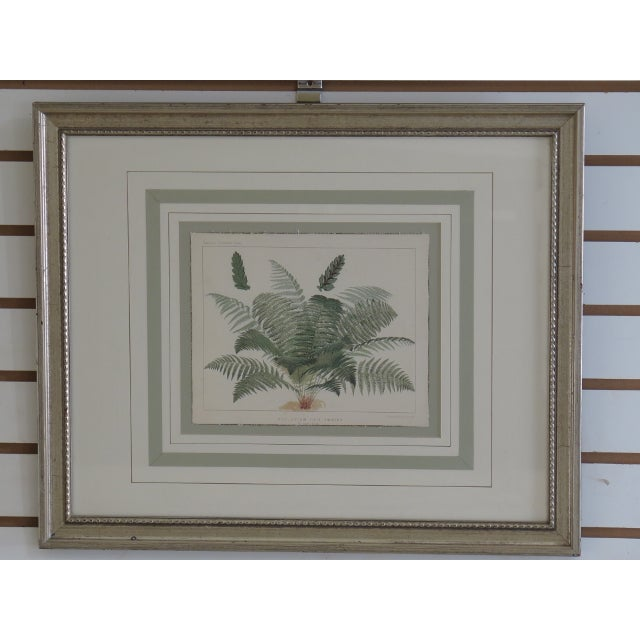 Approx: 100+ Years Old Details: Nice Silver Frames Quality Matting Nice Vintage Watercolor Prints Professionally Framed &...