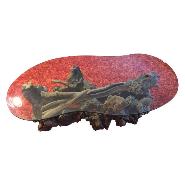 Mid-Century Vintage Driftwood Coffee Table - Image 1 of 4