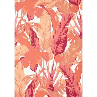 Thibaut Travelers Palm Wallpaper in Pink / Coral For Sale