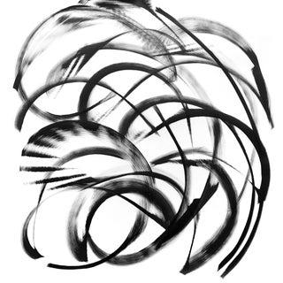 """Acer Palaeorufinerve"" Original Artwork by Thomas Hammer For Sale"