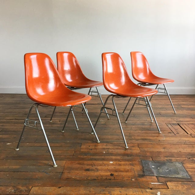1960s Vintage Herman Miller Eames Orange Fiberglass Shell Chairs - Set of 4 For Sale - Image 11 of 11