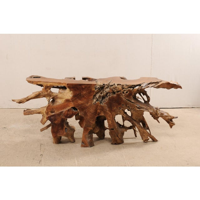 Tropical Hardwood Teak Root Console Table For Sale In Atlanta - Image 6 of 12