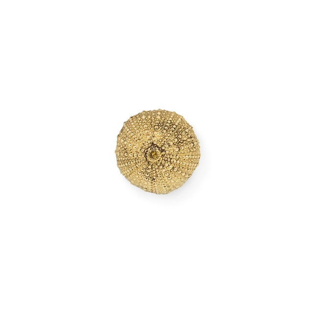 Not Yet Made - Made To Order Urchin Oc2016 Drawer Handle From Covet Paris For Sale - Image 5 of 5