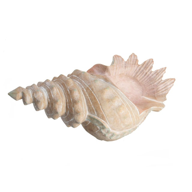 Handcrafted Wooden Seashell Sculpture - Image 8 of 8