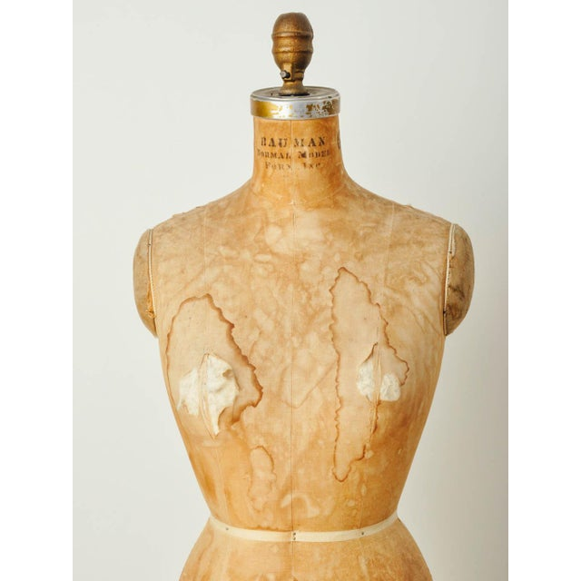 Vintage Bauman Model Dress Form Ladies Mannequin - Image 6 of 8