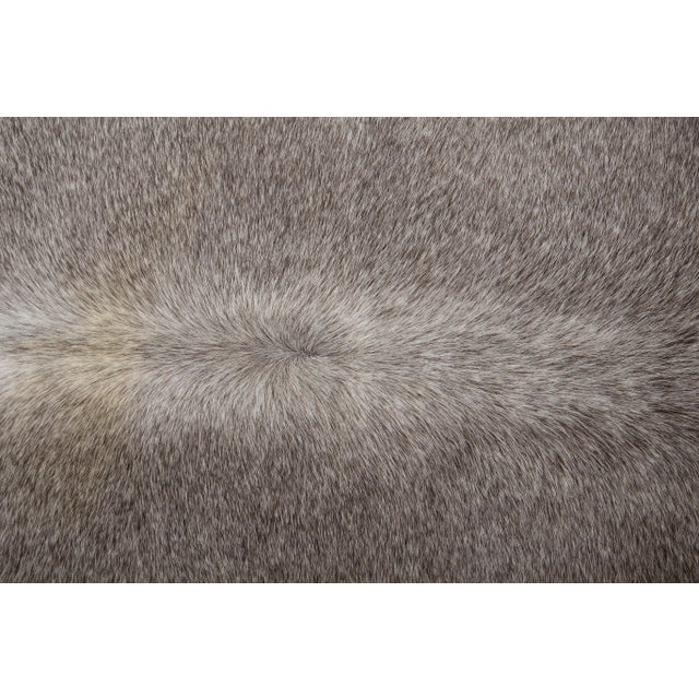 """Animal Skin Authentic Rare Aydin Cowhide Rug, Gray, Handmade in Europe - 6'0""""x7'0"""" For Sale - Image 7 of 11"""